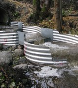 After: Engineered fish ladder provides adequate fish passage for coho salmon.
